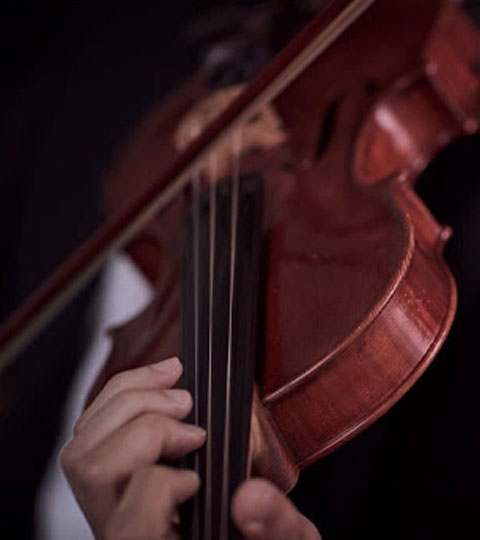 See the Melbourne Symphony Orchestra perform Beethoven's Symphony No. 7